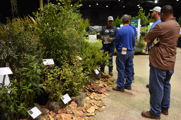 Landscapers looking at a display at the Native Plant Show