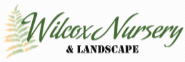 Wilcox Nursery & Landscape in Largo Florida Pine Sponsor Native Plant Show